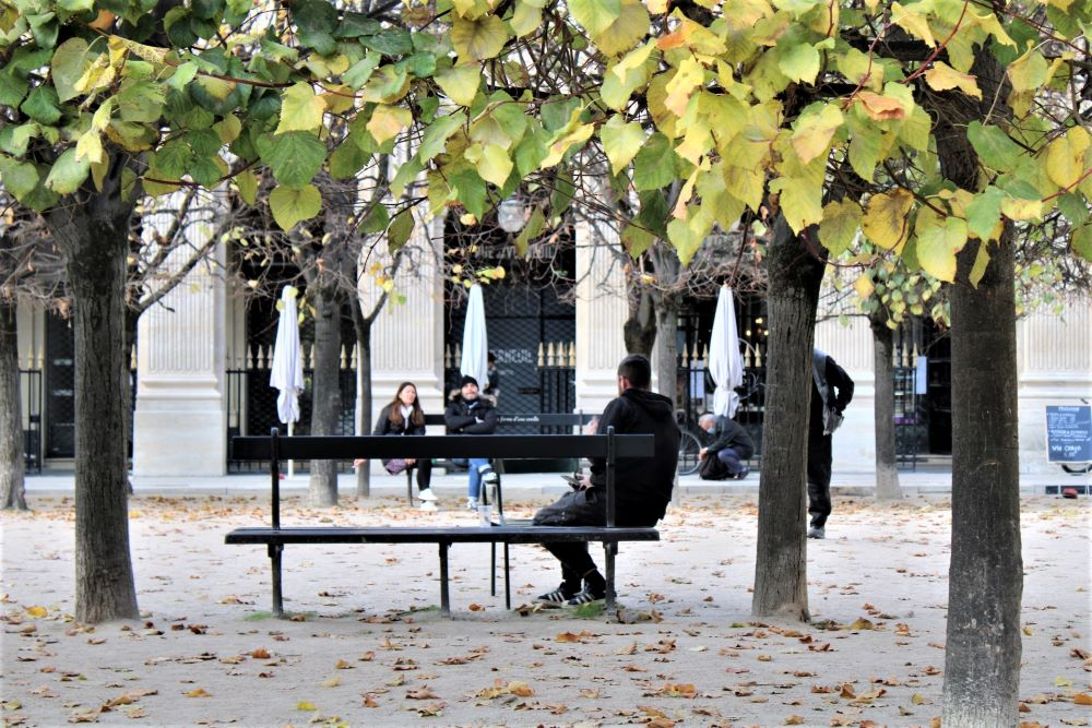 bancs du jardin de Palais Royal