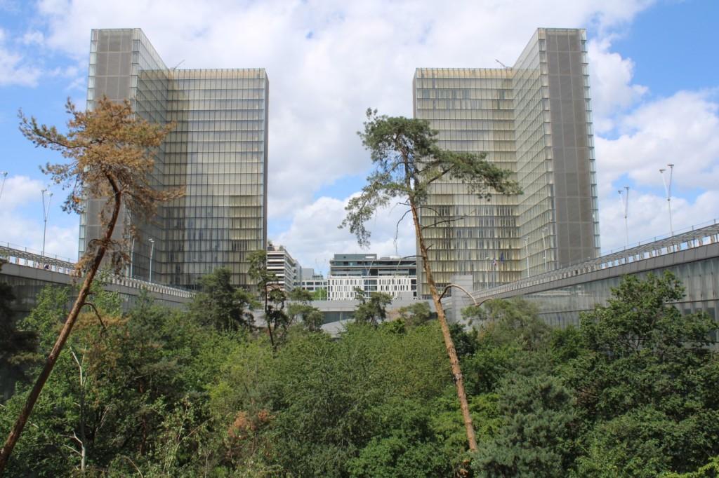 BNF vue végétale depuis la terrasse